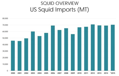NFI panel: Global squid supplies stable, El Nino affecting California supply | Coastal Restoration | Scoop.it