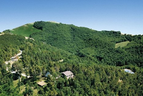 Best Le Marche Properties For Sale: The Hill That Breathes, Urbino | Le Marche Properties and Accommodation | Scoop.it