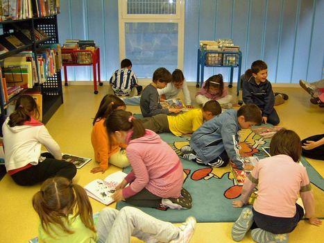 Los profesores mejorarán con la ayuda de los neuroeducadores | Emotions, Education and Neurosciences | Scoop.it