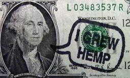 Industrial Hemp Crop to Be Planted in Kentucky in Anticipation of Hemp History Week | EcoWatch | Scoop.it