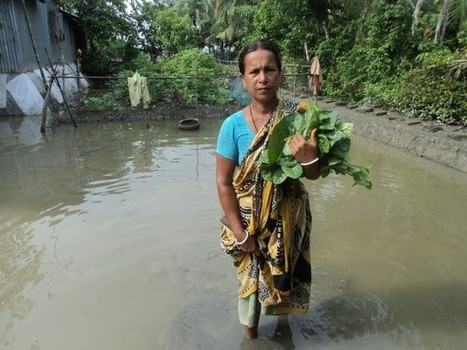 Bangladesh: Climate change, urbanization threatens drinking water supply - Asian Correspondent | landscape ecology | Scoop.it