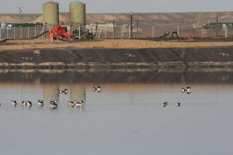Utah grapples with toxic water from oil and gas industry | Oxford | Scoop.it