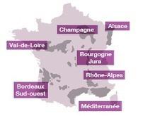 Les OP viticoles interpellent les parlementaires | Actualité du marketing digital | Scoop.it