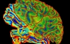 Can We Decipher the Language of the Brain? | the plastic brain | Scoop.it