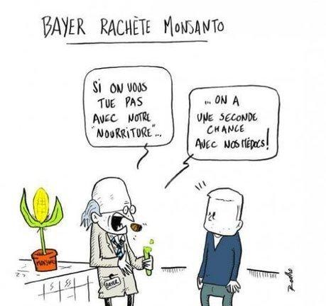 En achetant Monsanto, Bayer contrôlera près d'un tiers du marché mondial des semences | Ainsi va le monde actuel | Scoop.it