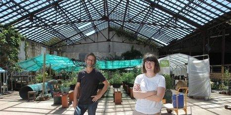 Cultiver la ville autrement - Journée d'agriculture urbaine @Darwin Bordeaux | Agriculture urbaine et rooftop | Scoop.it