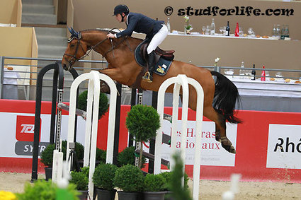 Quadesch et Ricore Courcelle rejoignent Aymeric de Ponnat | jumpinGPromotion - Equestrian Sport, Entertainment & Publishing | Scoop.it