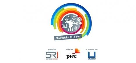 Observatoire ePub : +6% pour la pub en ligne en 2015 | Web & Media | Scoop.it