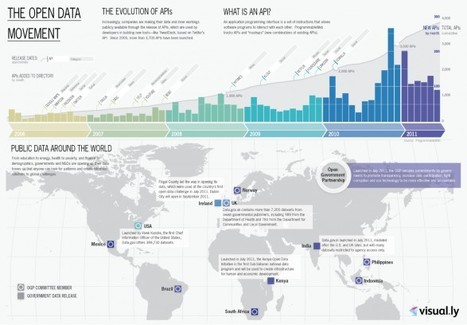 The Open Data Movement | datavisualization | Scoop.it