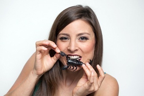 What Do Bugs Taste Like, Anyway?   Entomophagy: Edible Insects and the Future of Food   Scoop.it