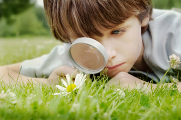 Nurturing Healthy Attitudes: Elementary Environmental Education and Outdoor Classrooms | Sustainable Living | PowerHouse Growers | Urban Agriculture and Design | Scoop.it