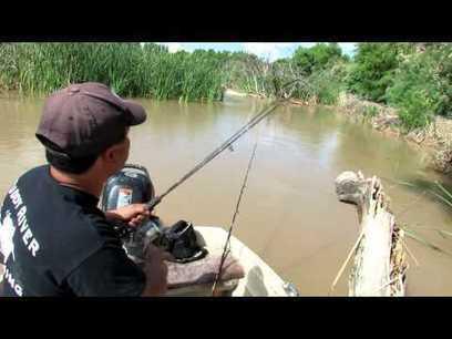 Fishing For Catfish | TopRankingVideos | Scoop.it