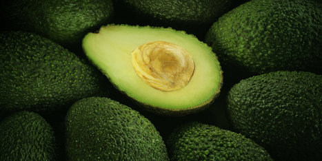 "Holy Guacamole! People In New Zealand Are Stealing Avocados (""low supply makes it very in-demand"") 