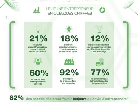 Infographie : les déclencheurs de la création d'entreprise chez les jeunes | En Essonne Réussir | Scoop.it