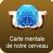 Carte mentale  de notre cerveau | Tout le web | Scoop.it