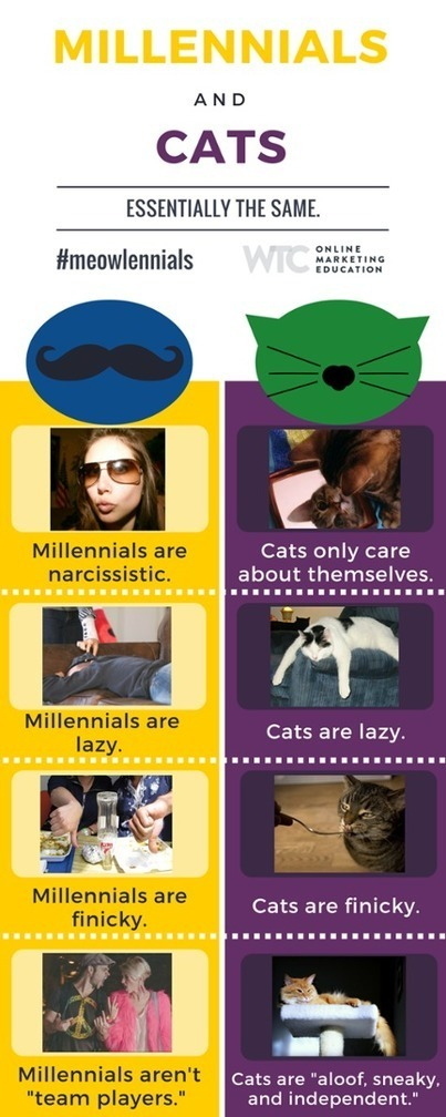 Why Owning a Cat and Marketing to Millennials Are Basically The Same Thing | Laura Betterly | Scoop.it