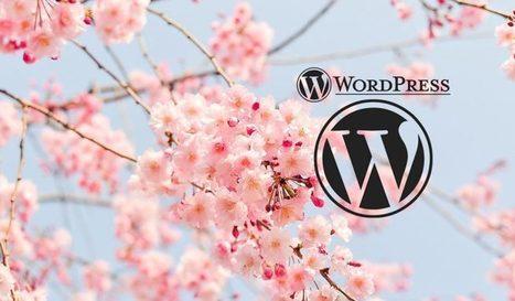 Comment faire des redirections facilement sous WordPress ? Petit tutoriel   Freewares   Scoop.it