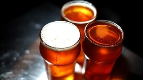 I cinque motivi per cui bere birra fa bene alla salute - TGCOM | fox | Scoop.it
