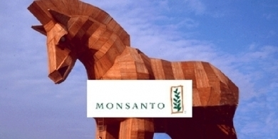 Stop Monsanto's Trojan Horse | Think outside the Box | Scoop.it