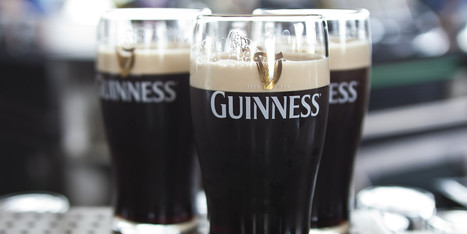 Guinness Holiday? 'They Should Call It Vomit Day' | Beer | Scoop.it