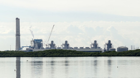 #Florida #nuclear plant operator sued for polluting drinking water #radiation #pollution | Messenger for mother Earth | Scoop.it