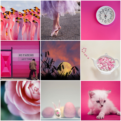 Pink: Weekly Photography Challenge - Digital Photography School | Guillaume R. | Scoop.it