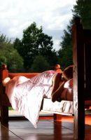 Silk bedding collection for comfortable interiors | silksensation | Scoop.it