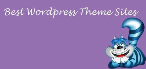 Best Wordpress Theme Sites Choose Amazing Template from Here | blog | Scoop.it