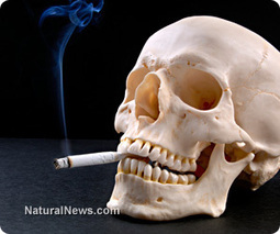 Like that Cigarette? You're Smoking plastic, pesticide, bleach and fiberglass - The four killers that Big Tobacco never mentions | News You Can Use - NO PINKSLIME | Scoop.it
