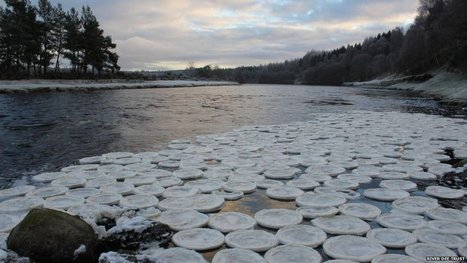 'Ice pancakes' found floating on the River Dee, UK | Amazing | Scoop.it