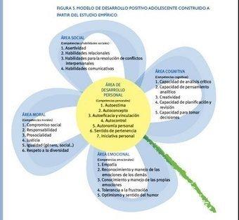 CEREBRO ADOLESCENTE: Un modelo de desarrollo positivo adolescente basado en la competencia | EDUCACIÓN en Puerto TIC | Scoop.it