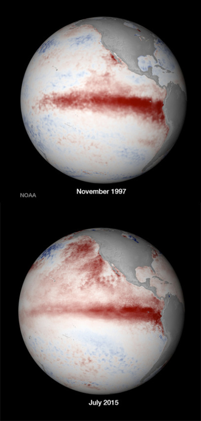 NOAA, El Nino and The Blob | Sustain Our Earth | Scoop.it