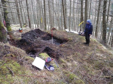 Charcoal burning platforms of the Atlantic woods of Scotland | microburin mesolithic archaeology | Scoop.it