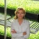 About FarmedHere | farmedhere.com | Vertical Farm - Food Factory | Scoop.it
