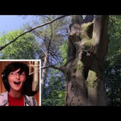 Watching Kids Narrate Planet Earth Is the Most Adorable Thing | Earth Day 2013 | Scoop.it