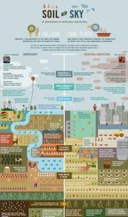 L'agroécologie, c'est hi-tech ! | Plateforme et ressources - ALIMENTERRE | Eco-Development & Agro-Ecology | Scoop.it