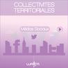 Collectivités territoriales et médias sociaux :