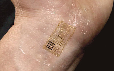 Electronic Skin Moves Us Closer to Cyborgs | Embodied Zeitgeist | Scoop.it