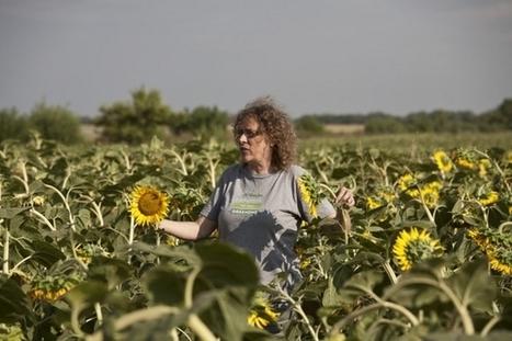 Farmers2Farmers : une plateforme pour l'agriculture écologique européenne | EFFICYCLE | Scoop.it