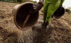 Africa: IFAD in Norway to Strengthen Partnerships for Investments in Rural People Who Are on the Sharp Edge of Climate Change | NGOs in Human Rights, Peace and Development | Scoop.it