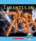 On the Radar: Top Picks from the Editors at Junior Library Guild: Creepy Crawly Nonfiction | School Library Journal | School Librarian In Action @ Scoop It! | Scoop.it
