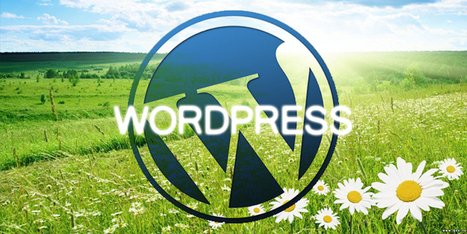 Guide & Tools For Building Premium WordPess Themes | Creative Verse | Web Design, CSS, HTML | Scoop.it