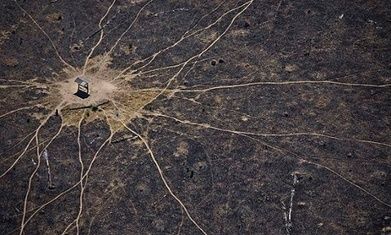 Brazil must target smallholders to curbrising deforestation   Responsible supply chains   Scoop.it