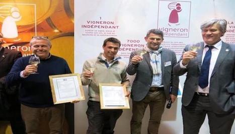 Les Vignerons Indépendants récompensés   InfoTravel.fr   INFOTRAVEL.FR   Scoop.it