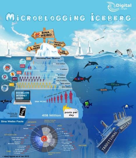 Chinese Migroblog Infographic | Panorama des médias sociaux en Chine | Scoop.it