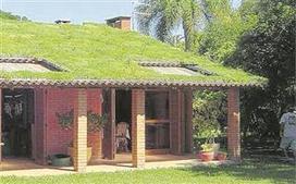 Um jardim sobre o telhado - odiario.com | Inovação & Sustentabilidade | Scoop.it