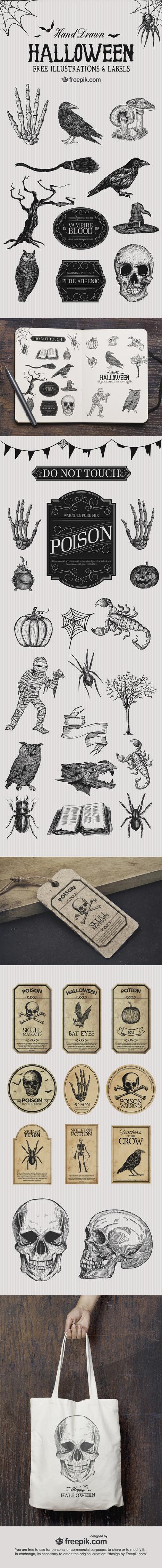 Free Halloween Illustrations | Web Design | Scoop.it