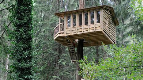 Zeanuri abrirá sus cabañas en árboles a partir de diciembre - Deia | Casa NIDO - HOUSE NEST | Scoop.it