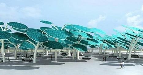 Los bosques serán solares y cargarán tu automóvil - VeoVerde | Agua | Scoop.it