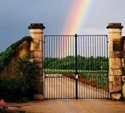 Eric Perrin on Chateau Carbonnieux 2013 Bordeaux White Wine Harvest | Vitabella Wine Daily Gossip | Scoop.it